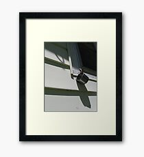 Bounty Framed Print