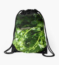 Black Swallowtail Caterpillar Drawstring Bag
