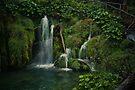 Plitvice Falls by Briana McNair
