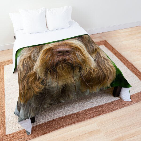 Shades of brown Spinone Comforter