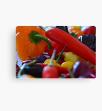 Chilli peppers Canvas Print