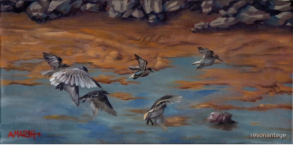 « peint à partir de croquis réalisés au phare de Heceta Head sur la côte de l'Oregon.  J'ai aimé les rochers » par resonanteye