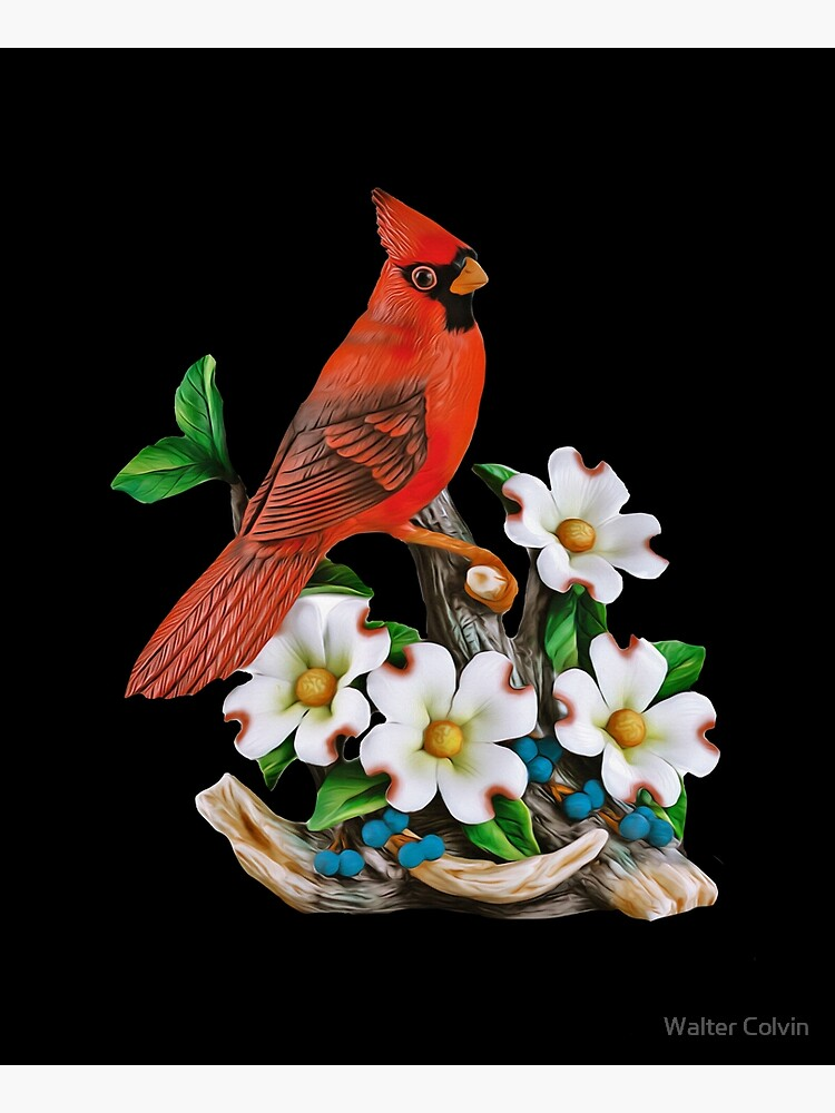 Northern Cardinal and Dogwood Flower. by Skyviper