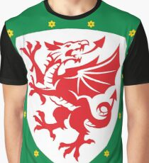 Wales Dragon Graphic T-Shirt