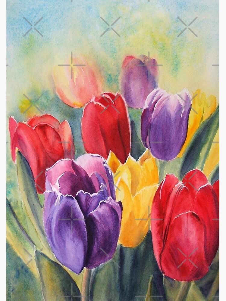 Tulip Rainbow by RSHarts