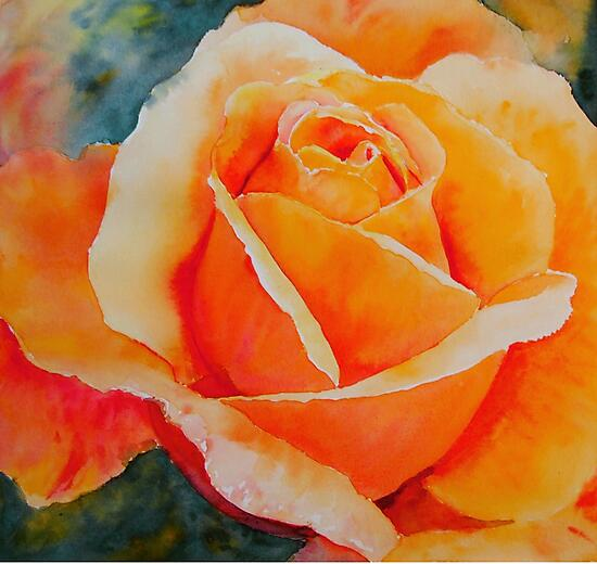 Apricot by Ruth S Harris