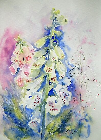 Foxglove Summer by Ruth S Harris