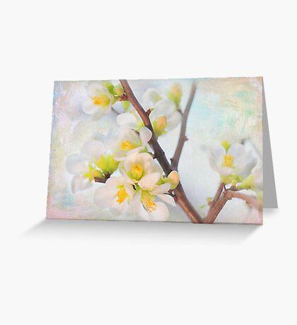 Beautiful White Snow Drop Flower Greeting Card
