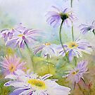 Giant Daisies by Ruth S Harris