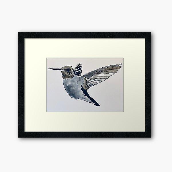 Pen and ink hummingbird Framed Art Print