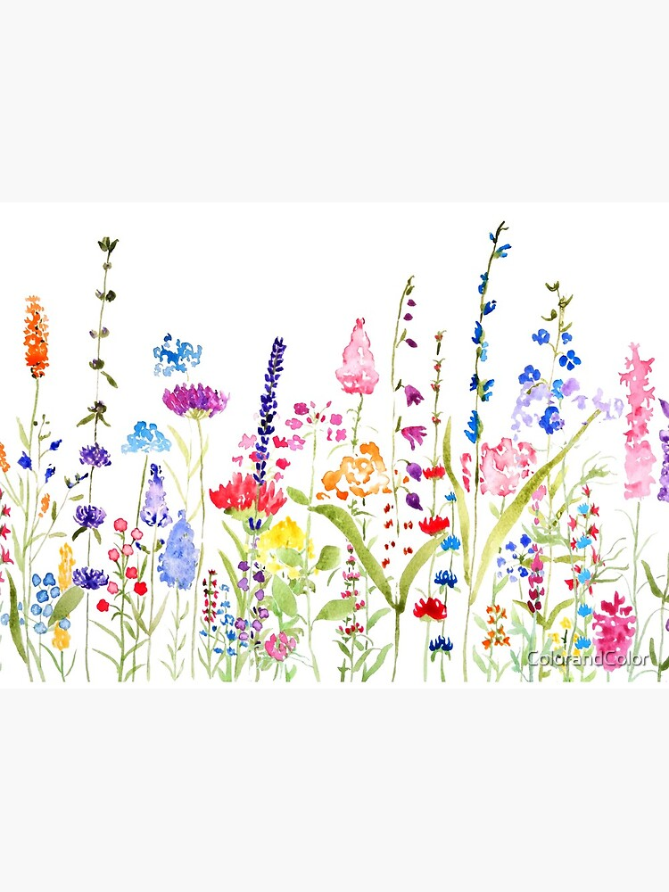 colorful wild flower field  by ColorandColor