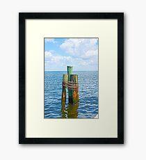 Three Friends in the Sea Framed Print