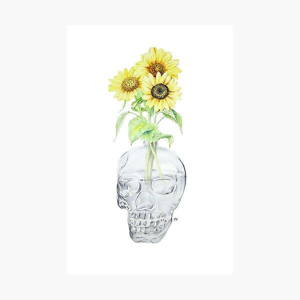 Hannah's Sunflowers Photographic Print
