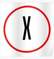 X Files X Poster