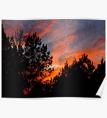 Evening In Sandhills Country Poster