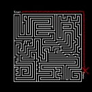 The Weirdist Maze by Kyle Hinckley