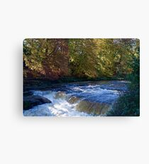 The River Ure Canvas Print