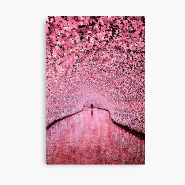 Japan pink cherry blossoms road Canvas Print