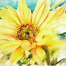 Sun Worshipper by Ruth S Harris