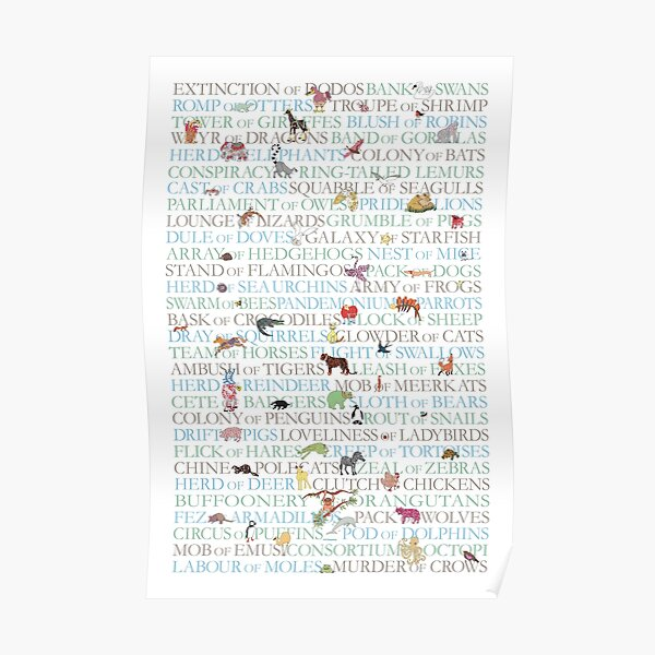 Animal Collective Nouns Poster