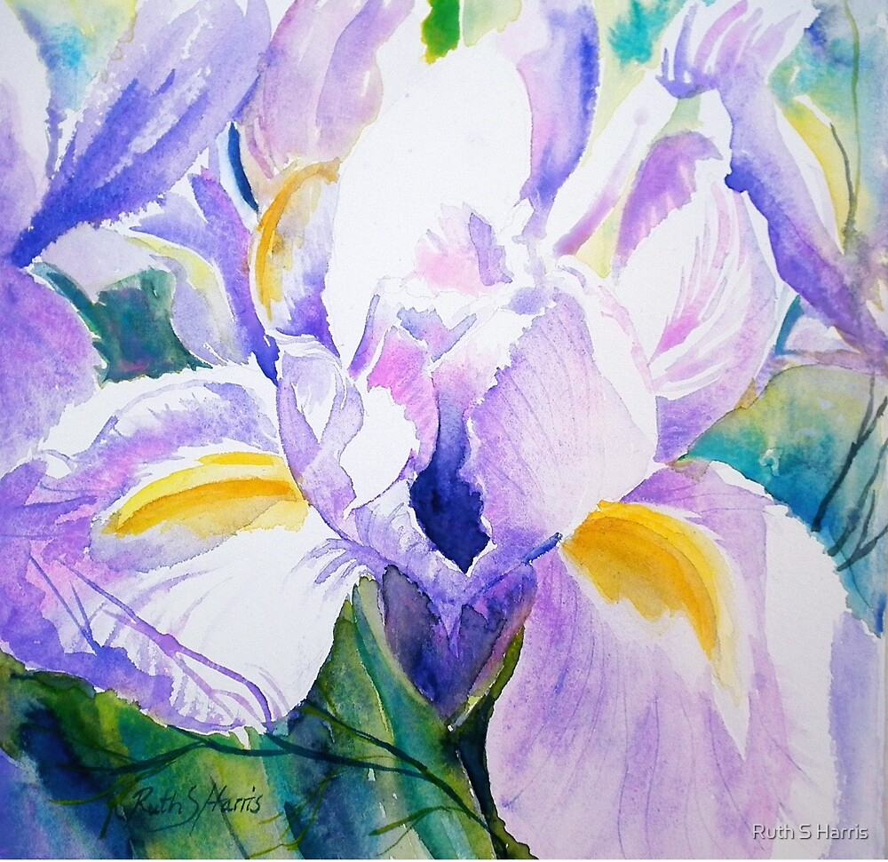Purple Haze by Ruth S Harris