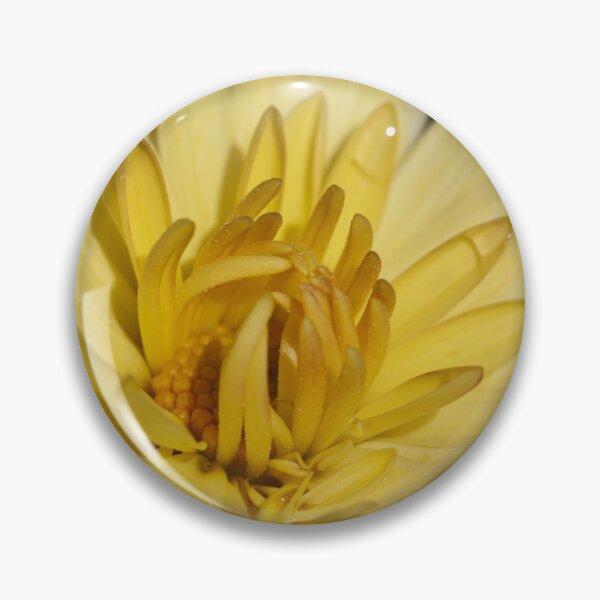 Morning Yellow Mum Pin