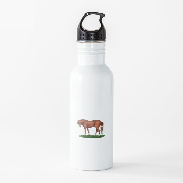 Mystery horsey - alezan horse Water Bottle