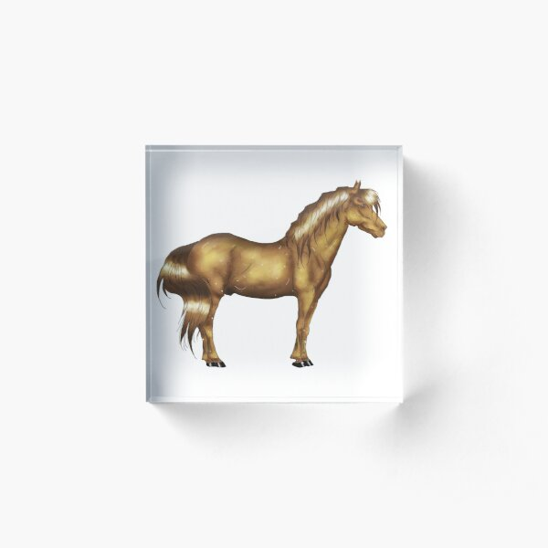 Golden horse Acrylic Block