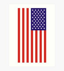 US National Flag Art Print