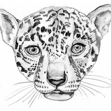 Jaguar  by catherine-art