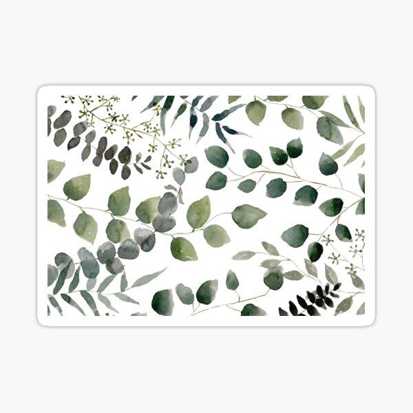 Eucalyptus Multi Sticker