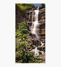 Bear Creek Beauty Photographic Print