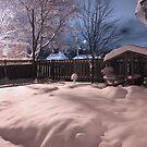 After The Snowfall by Stephanie Rachel Seely