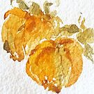 Persimmons by kest standley