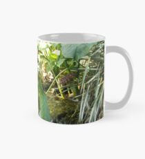 Huntington Falls Mug