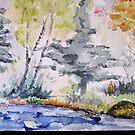 Rattlesnake Lake by kest standley