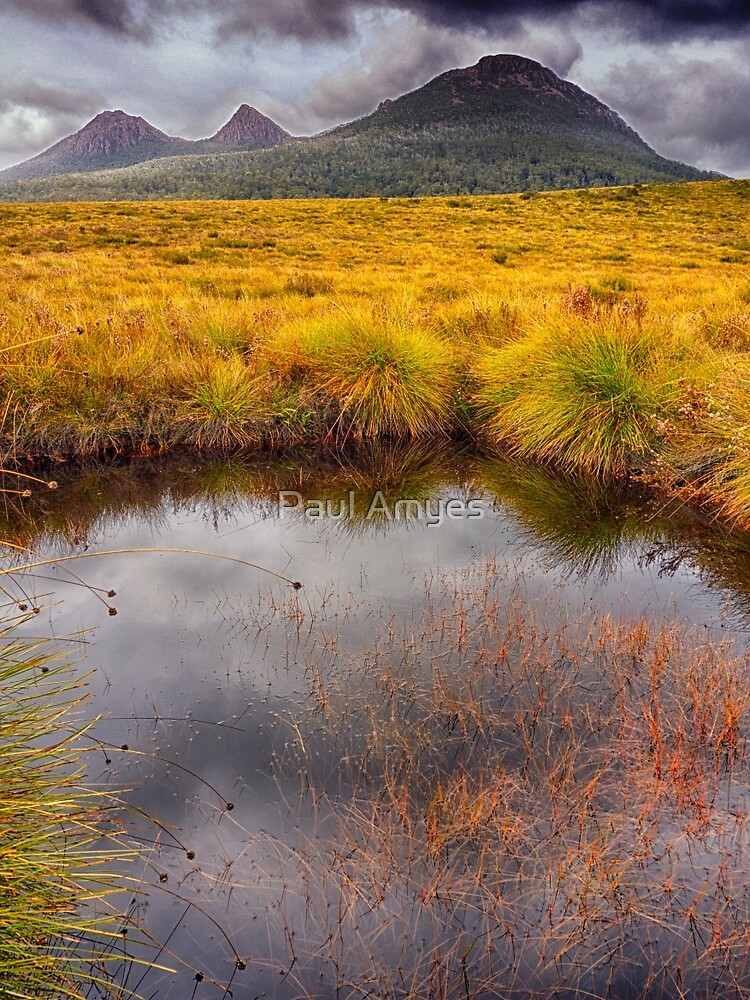 King William Range by AmyesPhotograph
