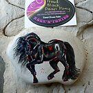 Rock'N'Ponies - PROUD BLACK PEARL PONY by louisegreen