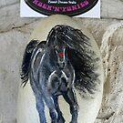 Rock'N'Ponies - ROCK 'N' WIZZARD by louisegreen