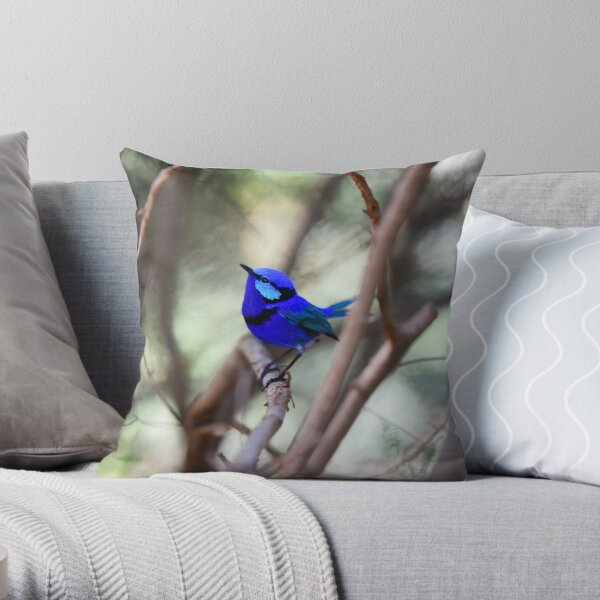 Splendid Blue Fairy Wren  Throw Pillow