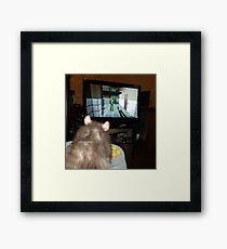 gaming rat Framed Print