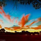 Twilight at Wingham by wallarooimages