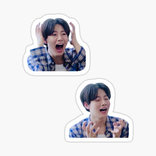 Kim Junkyu Treasure Meme  Sticker