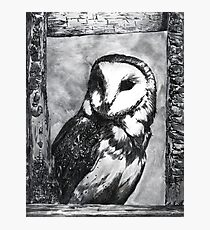 Black and White Barn Owl Photographic Print