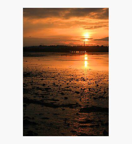 Amber Gold Photographic Print