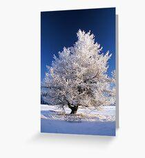 Frozen tree Greeting Card