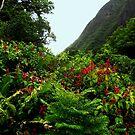 The Hawaiian Flower by markellsmith