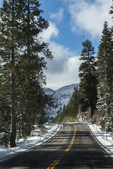 Lake Tahoe VI by Adi M