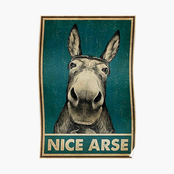 Funny Donkey Nice Ass Poster