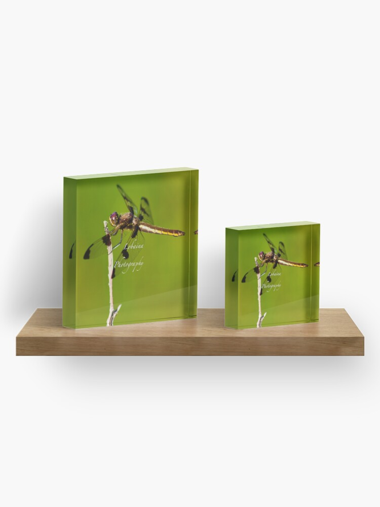 Alternate view of  Dragonfly of the enchanted forest by Yannis Lobaina  Acrylic Block
